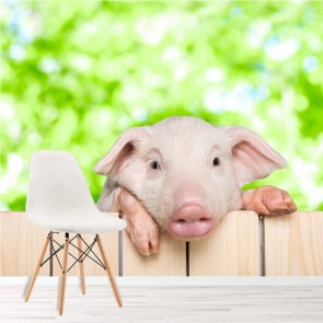 Piglet Peeping Over Fence Farm Animals Wall Mural kids Photo Wallpaper