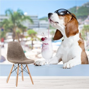 Beagle Dog In Sunglasses With Cocktail Animals Wall Mural Comedy Photo Wallpaper