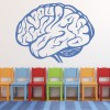 Human Brain Science Biology Educational Wall Sticker School Classroom Art Decals