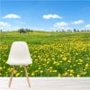 Spring Flower Meadow Countryside Landscape Wall Mural Floral Photo Wallpaper