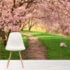 Pink Cherry Blossom Trees Forest Nature Wall Mural Floral Photo Wallpaper