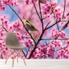 Himalayan Cherry Tree With Little Bird Nature Wall Mural Floral Photo Wallpaper