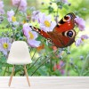Peacock Butterfly With Flowers Wildlife Animal Wall Mural Nature Photo Wallpaper