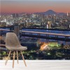 Mount Fuji & Tokyo Tower Japan Cityscape Wall Mural Skyline Photo Wallpaper
