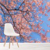 Pink Cherry Blossom & Blue Sky Flowers Nature Wall Mural Floral Photo Wallpaper