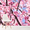 Cherry Tree & Spring Blossom Flower Nature Wall Mural Floral Photo Wallpaper