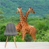 Pair of Giraffes African Safari Animal Wall Mural Nature Photo Wallpaper