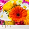 Summer Flowers Bouquet Rose & Daisy Floral Wall Mural Nature Photo Wallpaper
