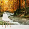 Waterfall By Autumn Trees Forest Landscape Wall Mural Nature Photo Wallpaper