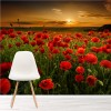 Field Of Poppies At Sunset Landscape Floral Wall Mural Nature Photo Wallpaper
