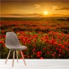Sunsets Over Poppy Field Flower Floral Wall Mural Landscape Photo Wallpaper