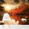 Swan On Lake Autumn Trees Animals & Nature Wall Mural Landscape Photo Wallpaper