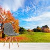 Autumn Countryside Colourful Trees Forest Wall Mural Landscape Photo Wallpaper