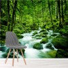 Stream Through Rainforest Rivers, Lake Forest Wall Mural Nature Photo Wallpaper