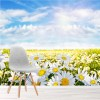 Daisy Field & Blue Sky Flower Landscape Wall Mural Floral Photo Wallpaper