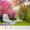 Path By Cherry Blossom Trees Springtime Forest Wall Mural Nature Photo Wallpaper