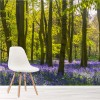 Bluebell Flowers In The Woods Forest & Trees Wall Mural Nature Photo Wallpaper