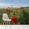 Red Poppy Field & Long Grass Flowers Floral Wall Mural Landscape Photo Wallpaper