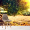 Olive Tree At Sunset Landscape Wall Mural Food & Drink Photo Wallpaper