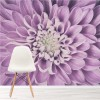 Purple Dahlia Flower Petals Close-up Floral Wall Mural Nature Photo Wallpaper