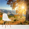 Sunrises Over Mountains In Autumn Landscape Wall Mural Forest Photo Wallpaper
