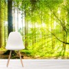 Sunlight Shines Through Green Trees Forest Wall Mural Nature Photo Wallpaper