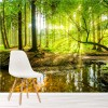 Sunlight Shines Through Green Trees Forest Wall Mural Landscape Photo Wallpaper