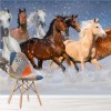 Herd Of Horses Running Through Snow Animal Wall Mural Equestrian Photo Wallpaper