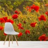 Poppy Flower Meadow Summer Landscape Wall Mural Floral Photo Wallpaper