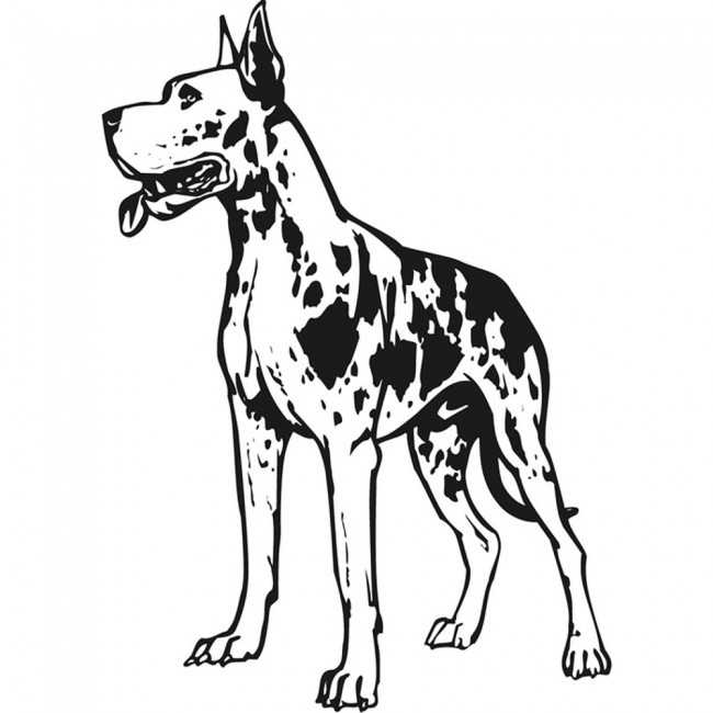 Great dane canine sketch pets dogs wall stickers home for Great dane coloring pages
