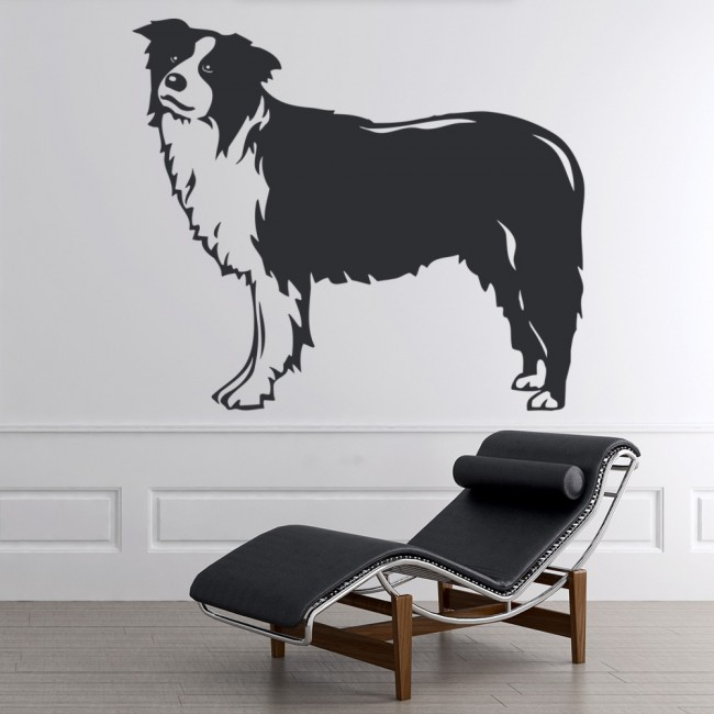 Border Collie Portrait Standing Canine Dogs Wall Stickers