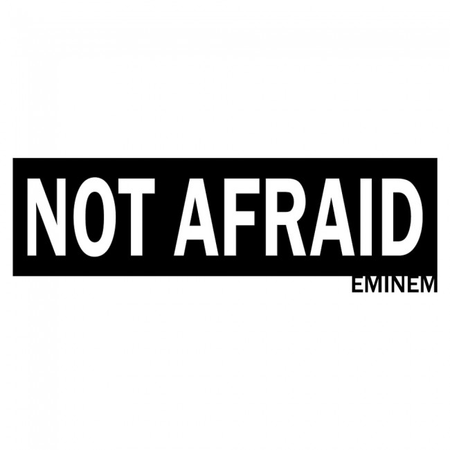 Not afraid eminem marshall mathers song title wall sticker for Eminem wall mural