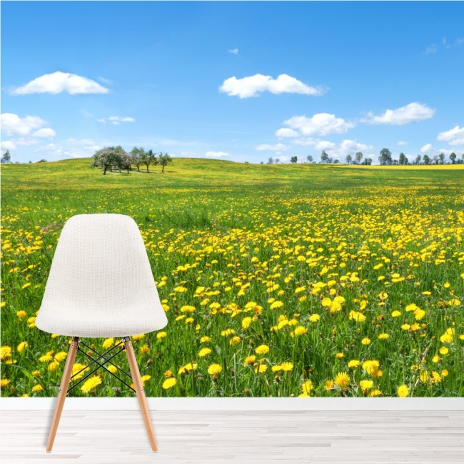 Spring flower meadow countryside landscape wall mural for Countryside wallpaper for walls