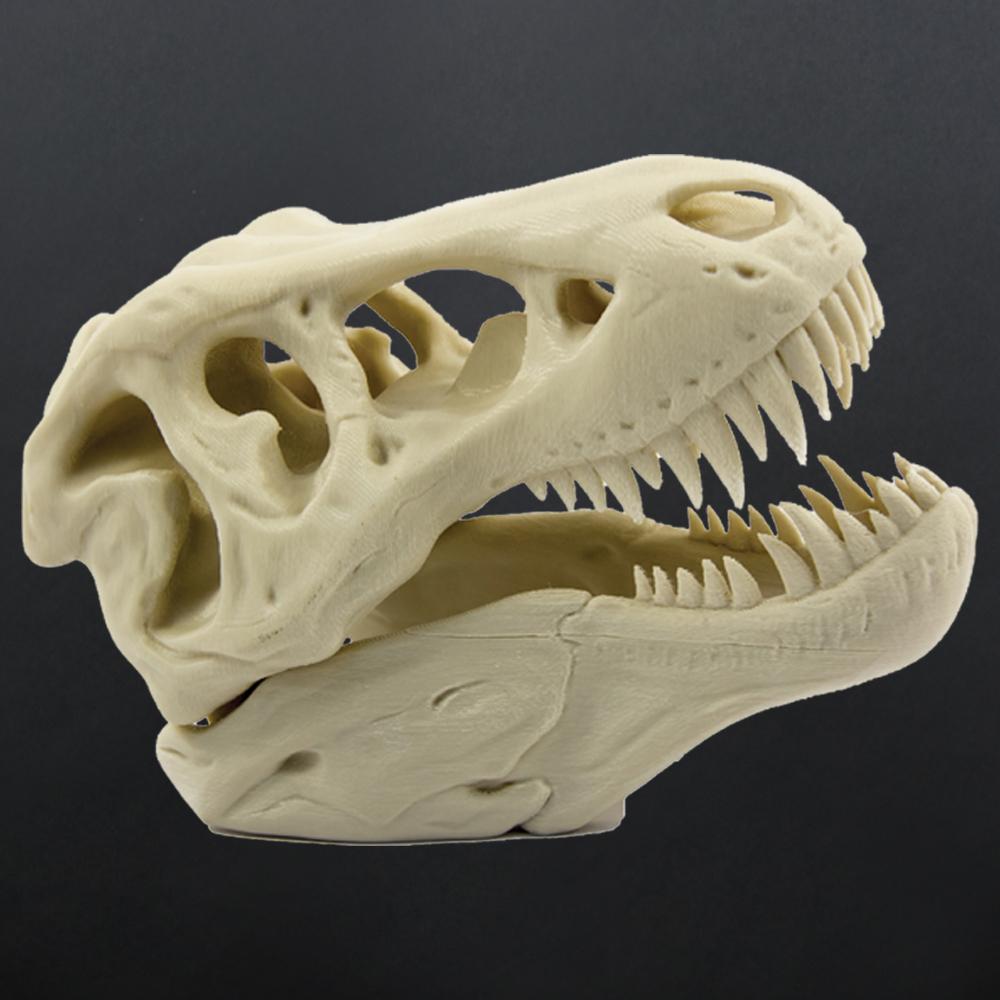 Dinosaur Skeleton Skull Wall Sticker Boys Room Jurassic Wall Decal Kids Bedroom