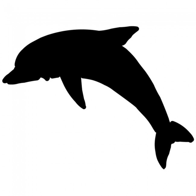 Ing dolphin silhouette under the sea wall stickers