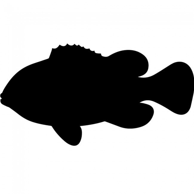 Fish Silhouette Wall Sticker Creative Multi Pack Wall Decal Art