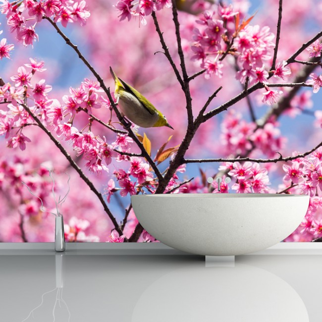 Pink cherry blossom wall mural bird photo wallpaper living for Cherry blossom mural