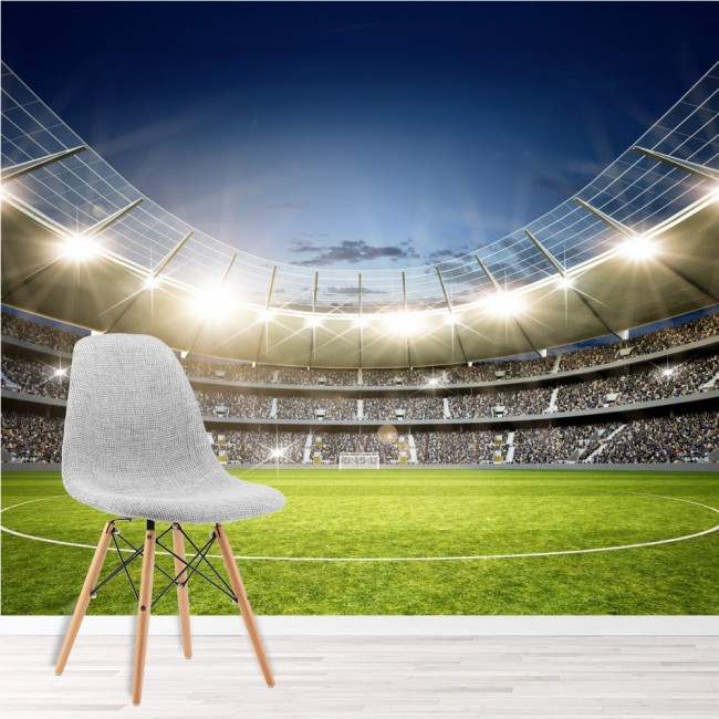 Football Stadium Wall Mural Football Soccer Photo