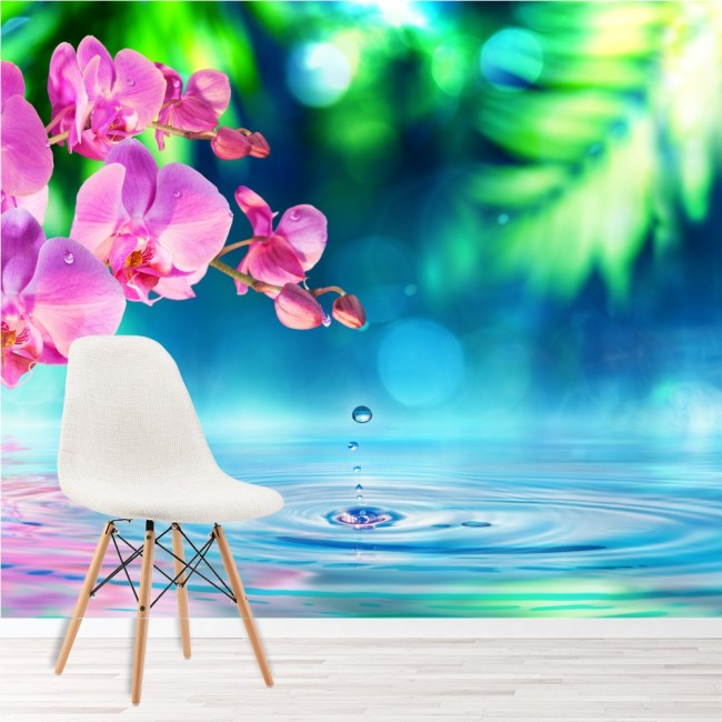 White Orchid Water Pink: Pink Orchid Flower Wall Mural Blue Water Photo Wallpaper