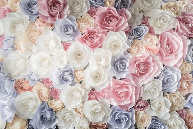 wall mural of rose flowers