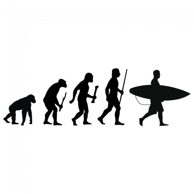 Surfing Evolution Wall Sticker Surfboard Wall Decal Kids
