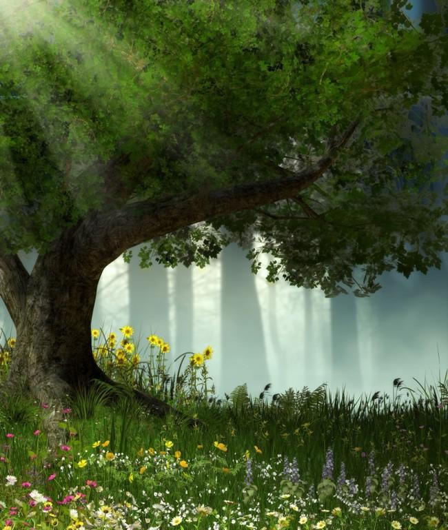 Enchanted Forest Sunlit Oak Tree Wall Mural Wallpaper