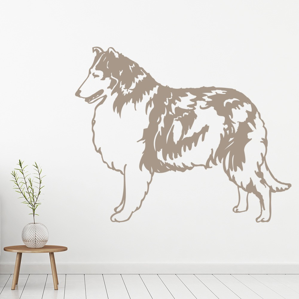 Collie Sheep Dog Wall Sticker Pets & Animals Wall Decal Canine Vets ...