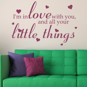 Iu0027m In Love With You Little Things One Direction Wall Stickers Music Art  Decals Part 68