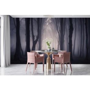 Dark Misty Woods Wall Mural Forest U0026 Trees Photo Wallpaper Bedroom Home  Decor