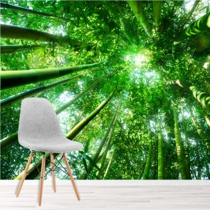 Green Forest Wall Mural Nature Trees Photo Wallpaper Living Room Bedroom Decor