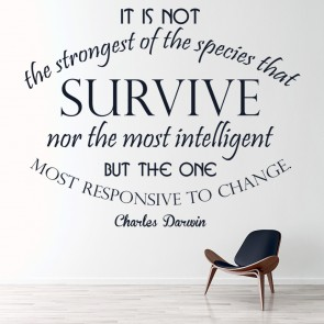 Survive U0026 Change Charles Darwin Life Quote Wall Stickers Home Art Decals  Decor